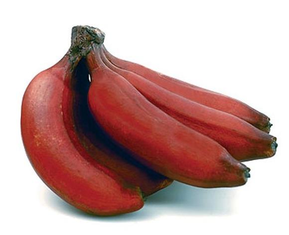 レッドバナナはフィリピンやエクアドル原産の果皮が暗赤色や紫色をしたモラードという品種であっさり甘みと仄かな酸味